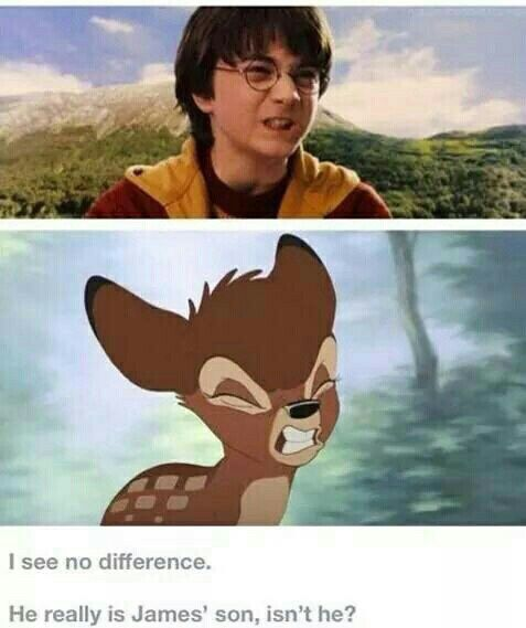 Oh my gosh! I love when people compare James to Bambi. Best thing ever  sad thing is, I totally see it!