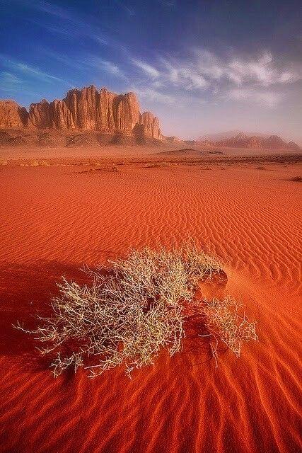 Sunset over the desert...Wadi Rum Jordan