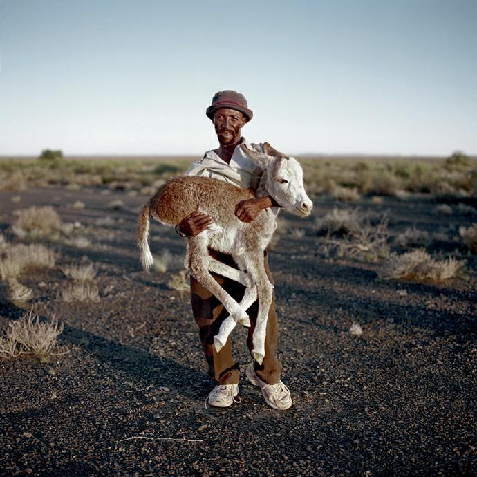 "Daniel Naudé, ""David Tieties with his three-day-old donkey. Verneukpan, Northern Cape,6 April 2009"""
