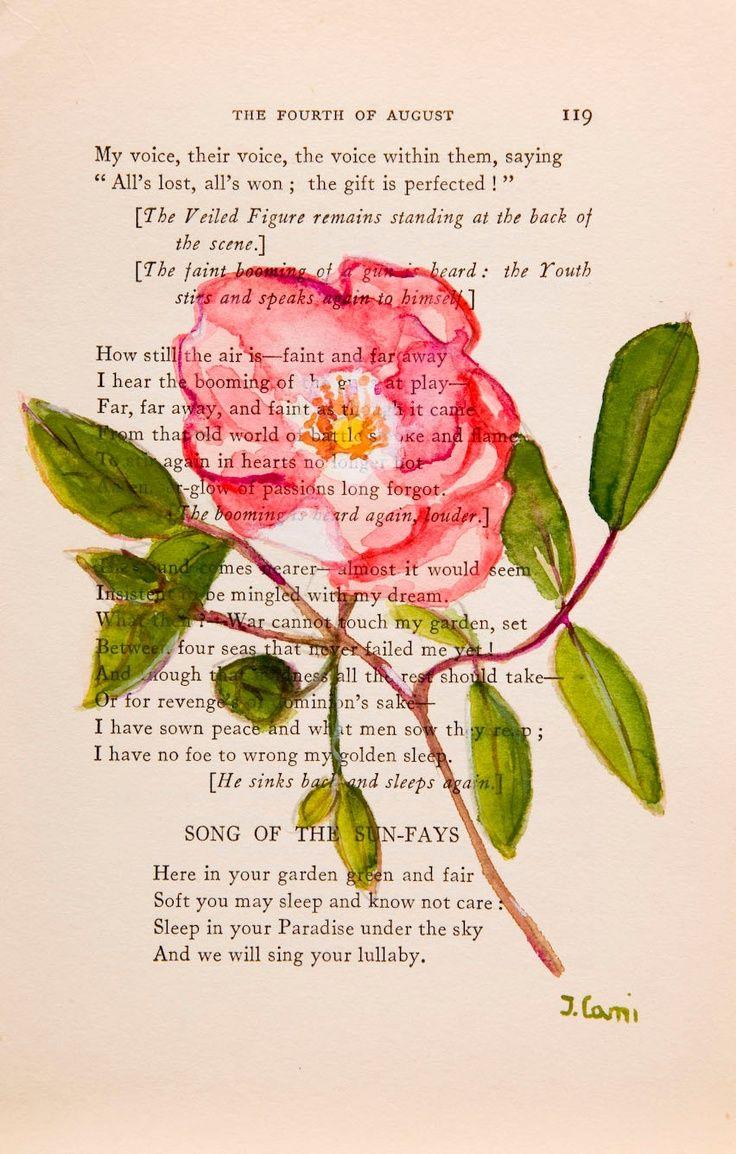 Diy Crafts Ideas Wild Rose Ii Original Watercolor Painting