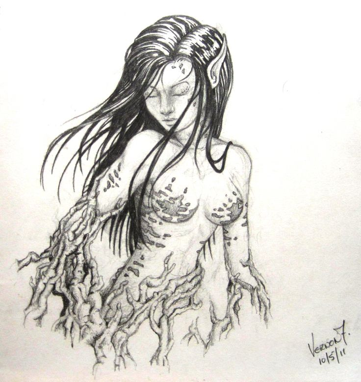 by Vernon Fourie | illo illustration pencil drawing forest nymph tangled branches female