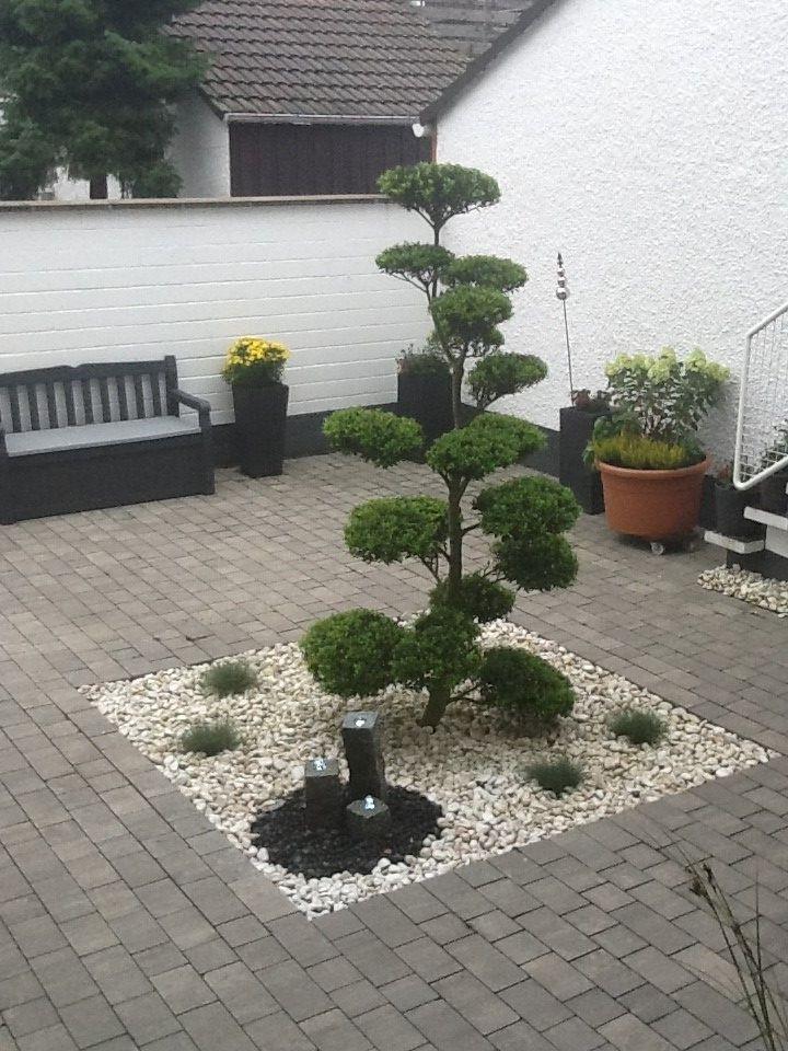 10 besten Tolle Garten-Bilder Bilder auf Pinterest Atrium - moderner vorgarten mit kies