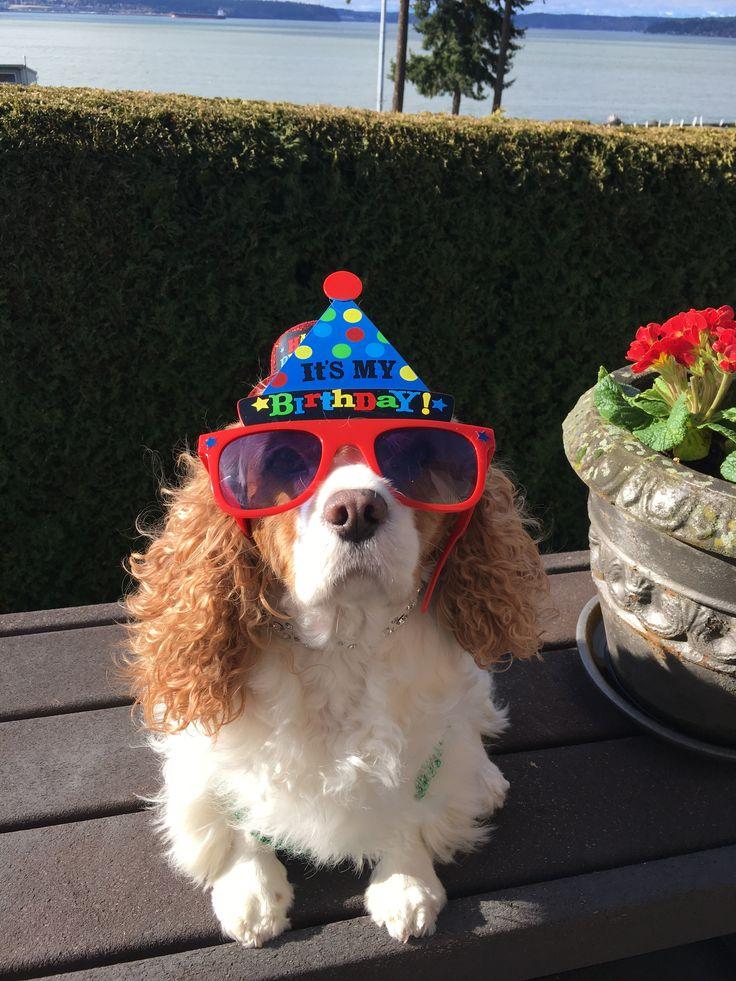Happy 8th Birthday Lilly