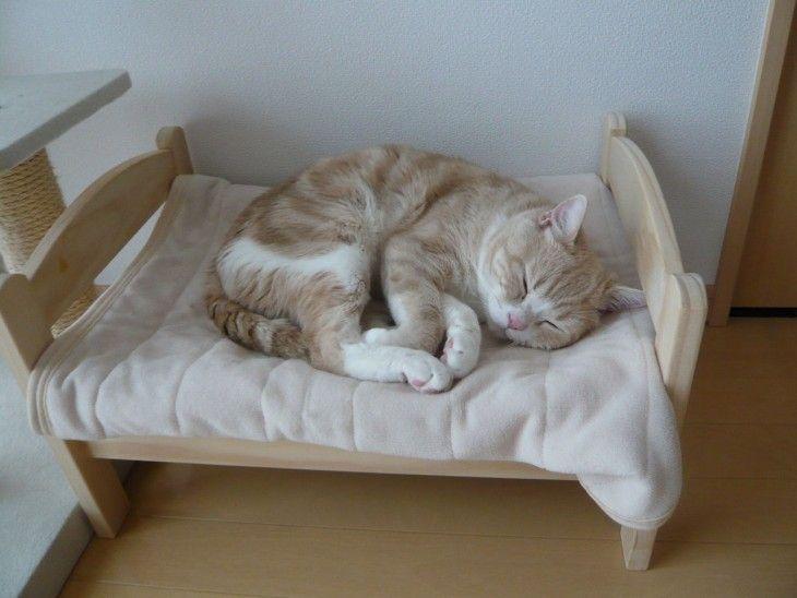 ikea-duktig-bed-hack-cat-bed-coverimage turn ikea doll bed into pet bed! Ikea Cat Bed, Ikea Doll Bed, Doll Beds, Ikea Beds, Cat Bunk Beds, Cat Hacks, Japanese Cat, Japanese Culture, Pet Furniture