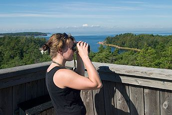 Go Bird Watching to the Gulf of Finland National Park  The National Park is known for its sea birds. In May, the area also offers good possibilities to watch the arctic birds migrating, for example in the bird watching tower on the island of Ulko-Tammio.
