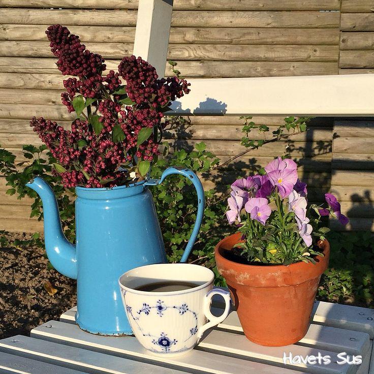 musselmalet mygarden coffee madam blå syrener havetssus havets sus