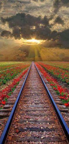 Vías del tren en Rumanía.