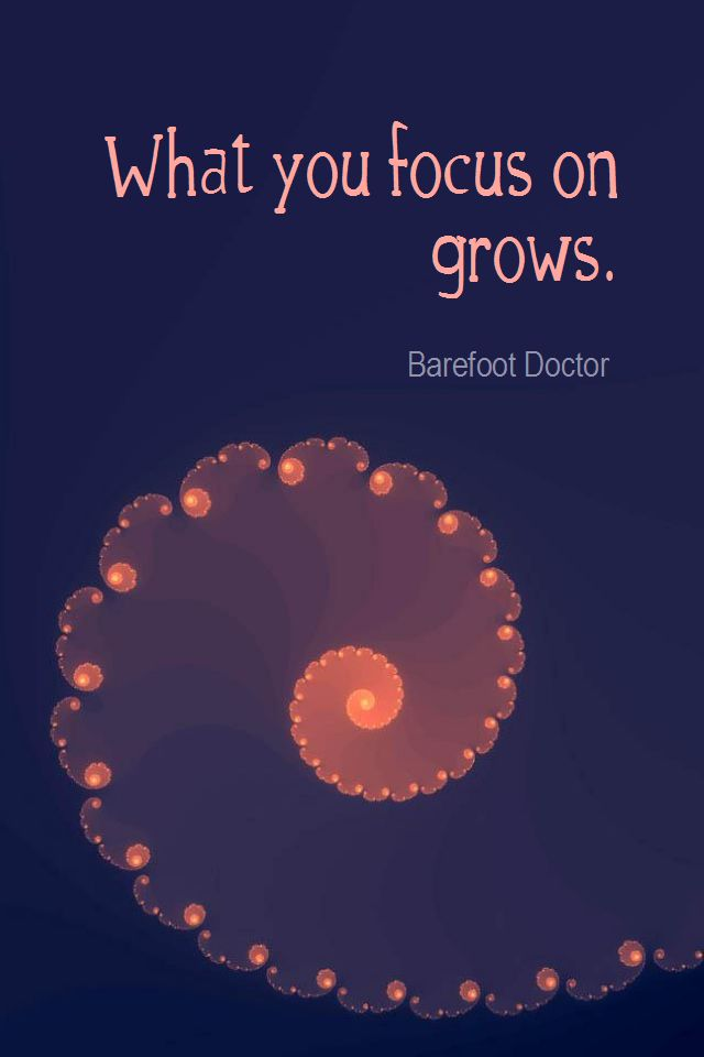 Daily Quotation for July 23, 2012   #quote  #quoteoftheday  What you focus on grows. - Barefoot Doctor