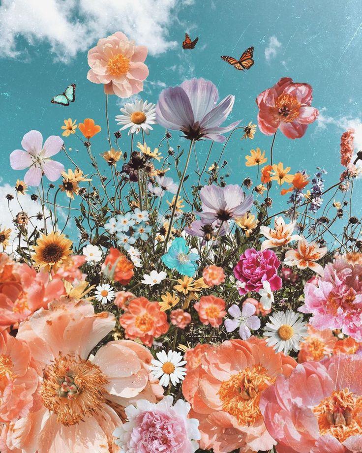 @𝓀𝒶𝓉𝑒𝓈𝓅𝒶𝒸𝑒𝓁𝒾𝓃 | Flower wallpaper, Art collage wall ...