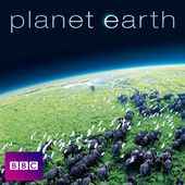 Day 2: Planet Earth, Series 1