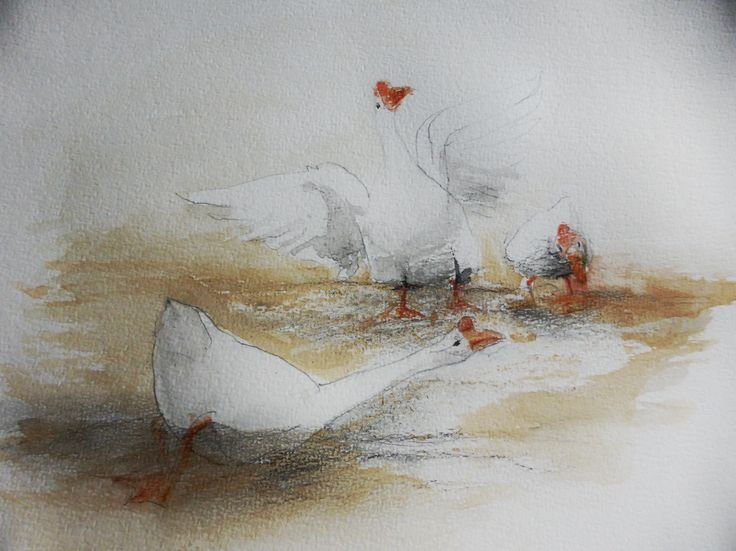 'Chinese geese', pen, ink, watercolour drawing