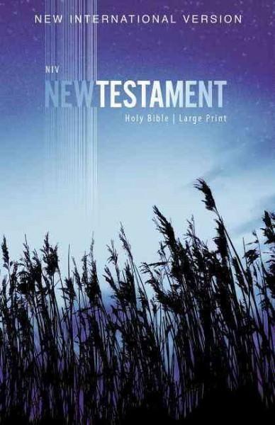 NIV Outreach New Testament: New International Version, Wheat