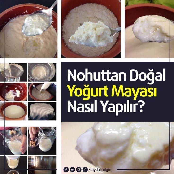 Nohuttan Doğal Yoğurt Mayası Nasıl Yapılır? @faydalibilgin #sağlık #beslenme #mutfak #yemek #yoğurt