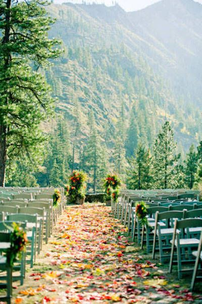 A wedding beneath the pines is a PERFECT way to bridge summer and winter. Click through to see the 6 best places to host a fall wedding.