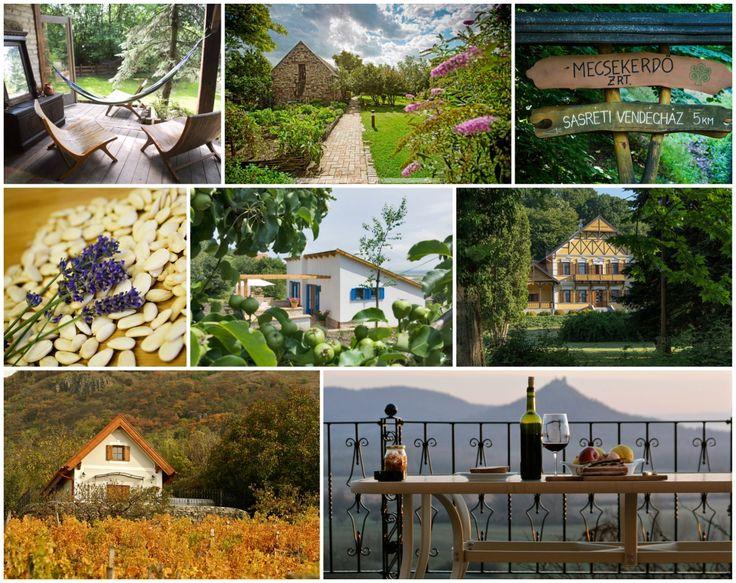 """Ha elér a """"hagyjál békén"""" érzés, kötelező kicsit lelassulni, élvezni a természetet, a jó borokat és a kiváló ételeket, a csendet és az őszi fényeket. Ilyen helyeket gyűjtöttünk össze Magyarországon, s emellett a válogatásba becsempésztünk három >>igazi<<…"""