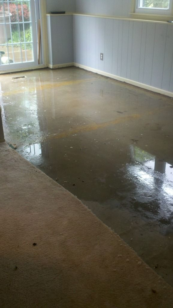 how to clean wet carpet from flood