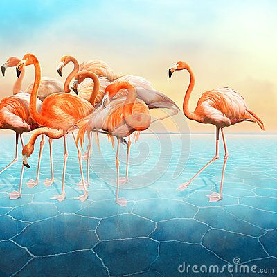Beautiful photo manipulation with a range of red flamingo at left side in the blue surreal desert with a sunset sky