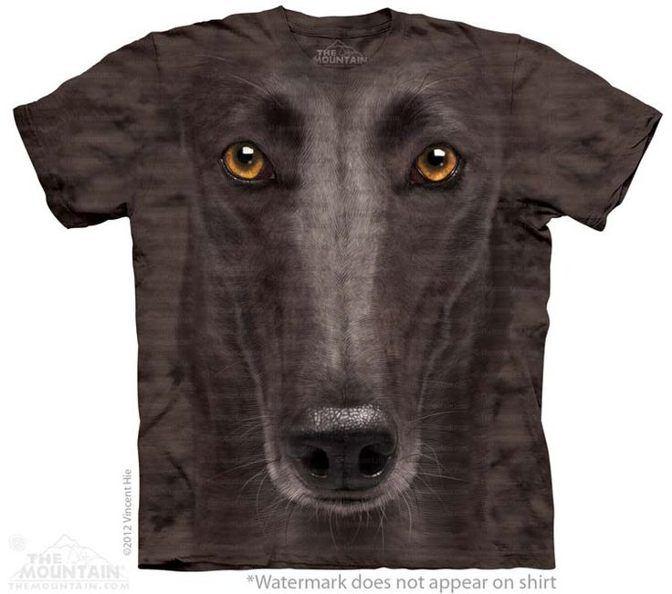 Greyhound T-Shirt - Click image to see hundreds of different animal t-shirts #themountaintees