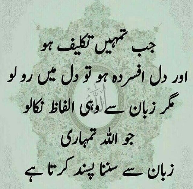 Warrior Life Meaning In Urdu