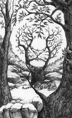 1000+ ideas about Optical Illusions Drawings on Pinterest ...