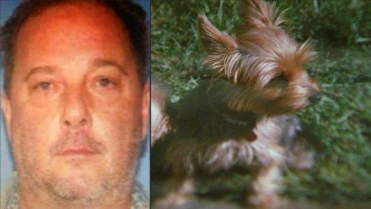 Rhode Island man gets prison time for fatally beating neighbors small dog with cane #news #alternativenews
