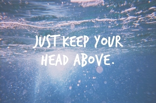 //above the water.: Water, Keep Swim, Lyrics Quotes, Dogs, Life, Chin Up, Songs, Jack Mannequin, Inspiration Quotes