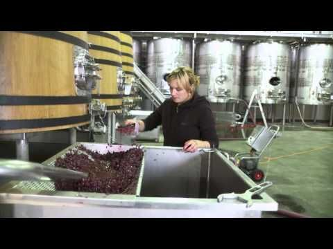 October speaker Blair Gibbs and Spy Valley Wine: Video