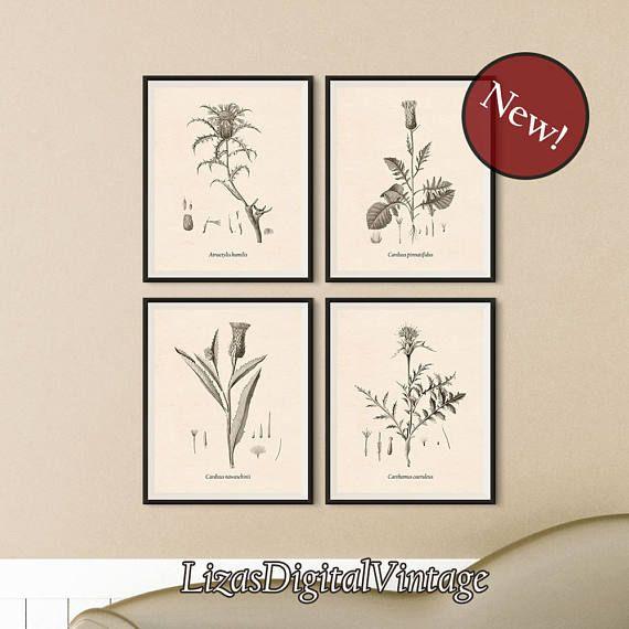 Thistle flower print set of 4 botanical prints diy print thistle decor diy wall art instant print thistle print printable art set