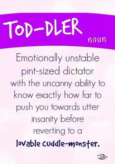 TOD-DLER (Noun)