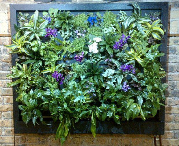 Mejores 101 im genes de the compact home garden space for Jardines verticales wikipedia