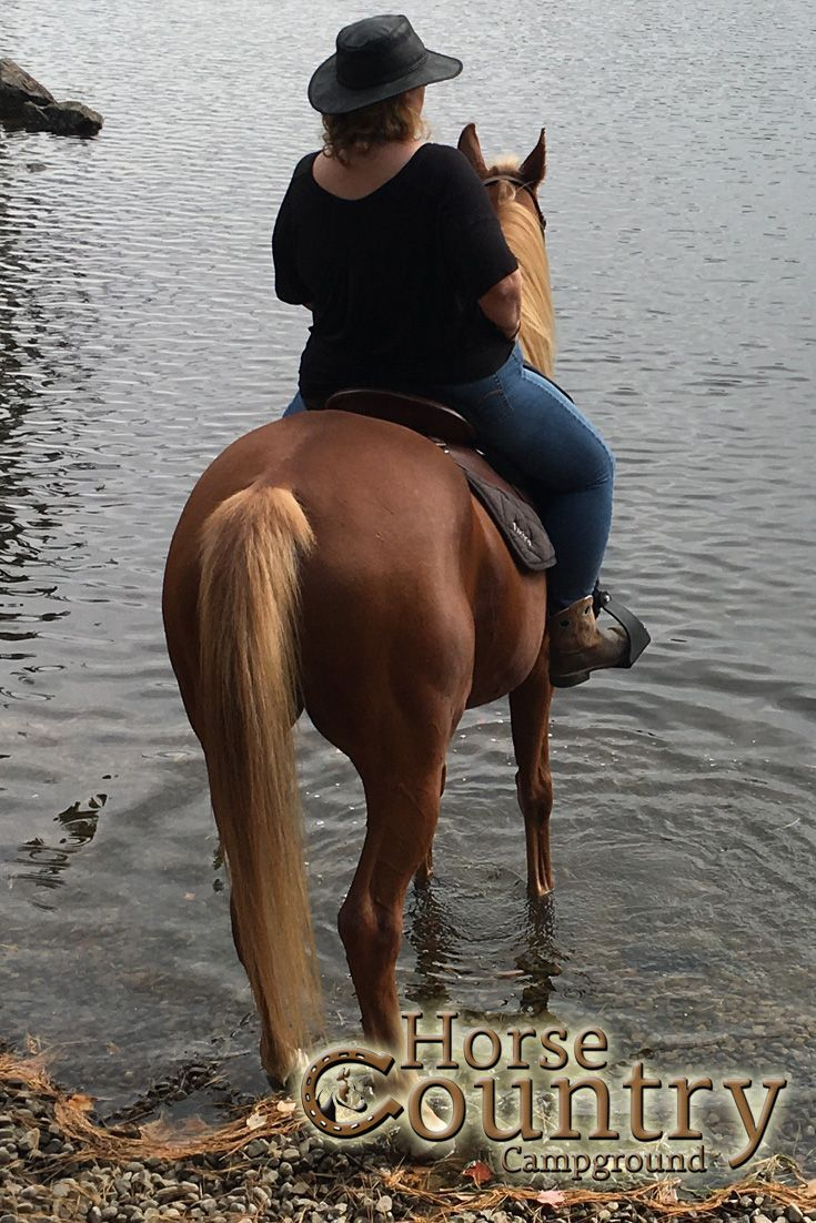 Not All Those Who Wander Are Lost!  For horse owners seeking an adventure out on the horse country trails. Let one of our experienced guides lead you on an amazing trail ride to our most scenic trails and rest areas.
