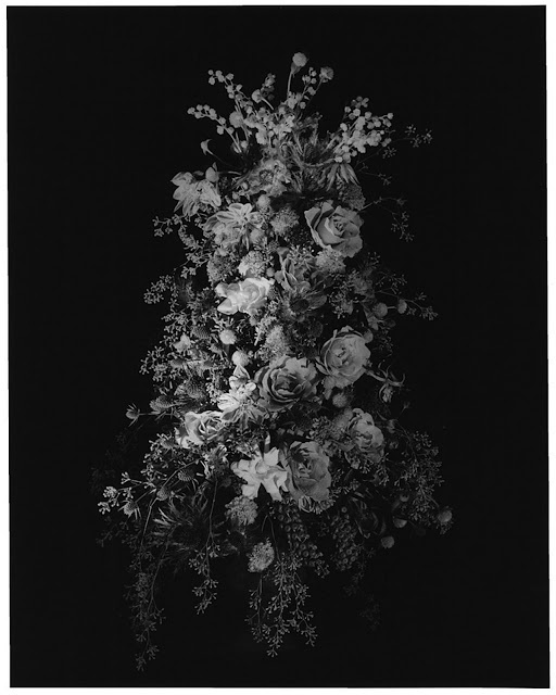 Flowers Photographer: Robert Mapplethorpe