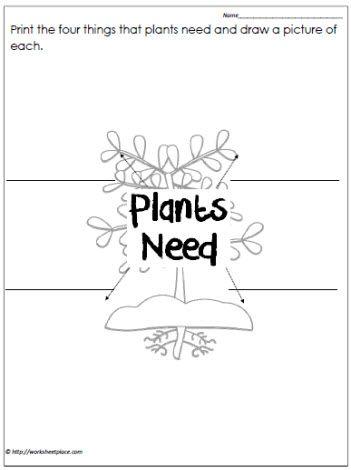 87 best sci 1 characteristics needs of living things images on pinterest preschool. Black Bedroom Furniture Sets. Home Design Ideas