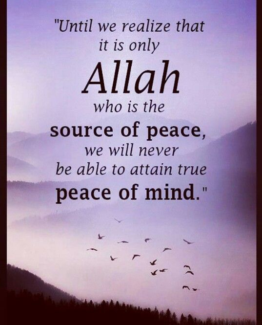 Islamic Quotes About Peace: 1000+ Ideas About Nice Sayings On Pinterest