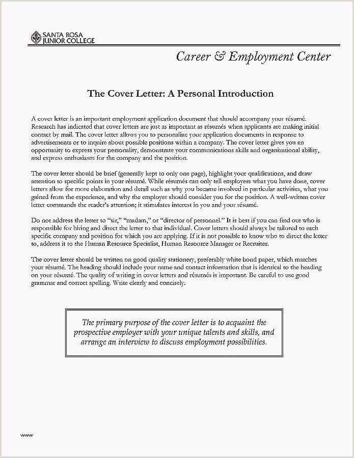 Copy Editor Resume In 2020 Resume Lettering Cover Letter For Resume
