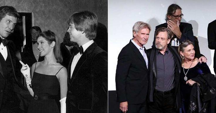 Fué en el año de 1977 cuando se estreno la primera película de la maravillosa saga Star Wars, hoy han pasado 38 años desde entonces y finalmente una nueva película se ha estrenado y todos los fanáticos están al borde de un colapso nervioso pues no caben de la emoción de poder decir que podrán ver lo que sucedió con los protagonistas de su película favorita. Star Wars El despertar de la fuerza, realizó su premier en la madrugada de el día 17 de Diciembre, y milones de personas acudieron…