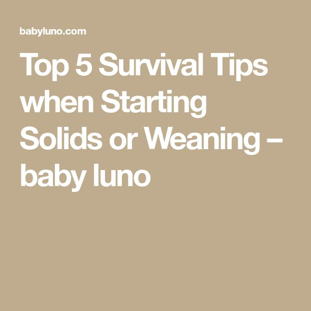 Top 5 Survival Tips when Starting Solids or Weaning – baby luno
