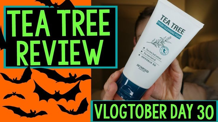 Vlogtober Day 30: SKINFOODS TEA TREE SKIN CARE REVIEW Dr Dray