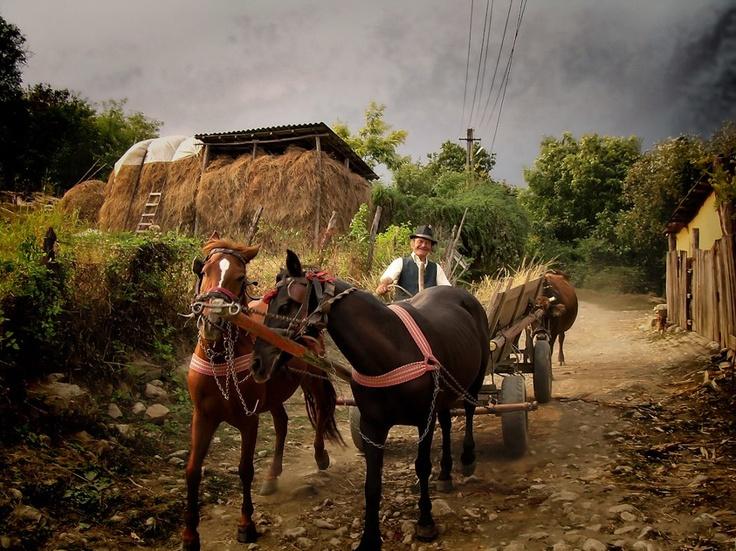 .Rural life. Romania.