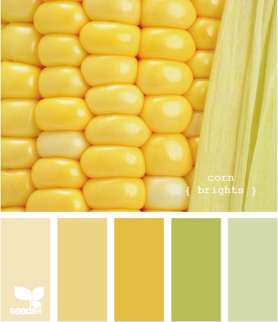 corn brights... this could work for the existing green colored walls, the trim, and maybe even the kitchen?