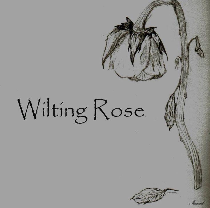 Wilting Rose By Wilting--Rose.deviantart.com On