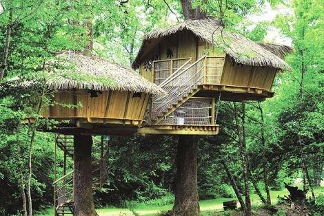 Franse campings met boomhutten - Reizen en vakanties | U leest er alles over op Reiskrant.nl van De Telegraaf [reiskrant]
