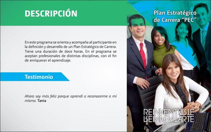 Descripción del Plan Estratégico de Carrera.