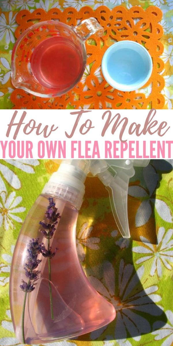 How To Make Your Own Flea Repellent — Making your own flea repellent will not kill those pesky fleas, but it does a dandy job of keeping her less full of them after we bathe her and apply that awful toxic vet-obtained goo.
