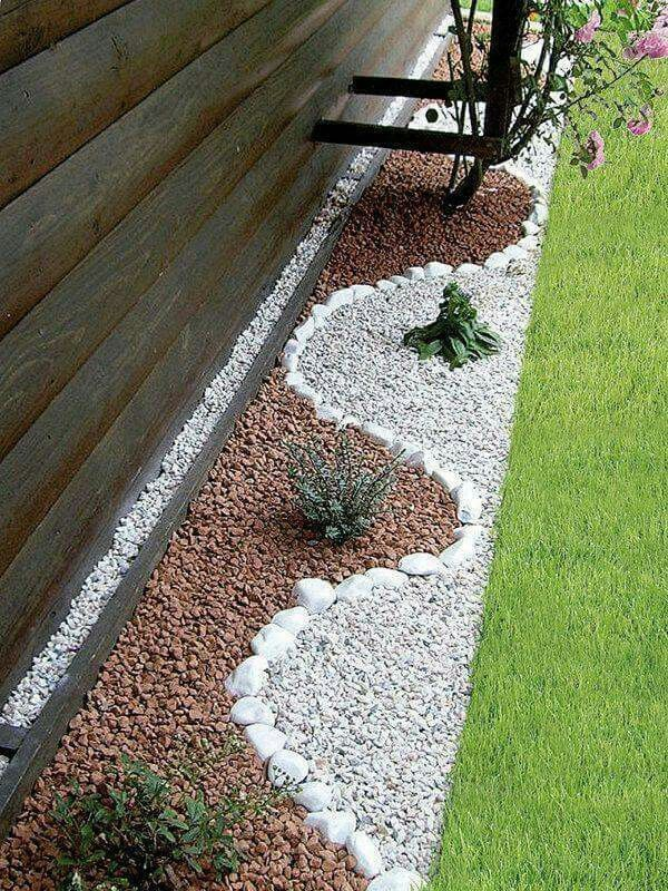 Image result for succulents white gravel