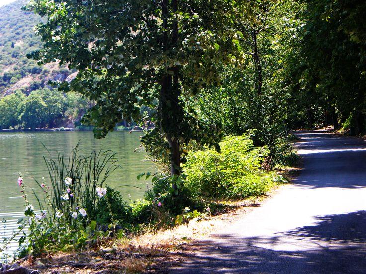 Γυρολιμνιά~ Lake tour