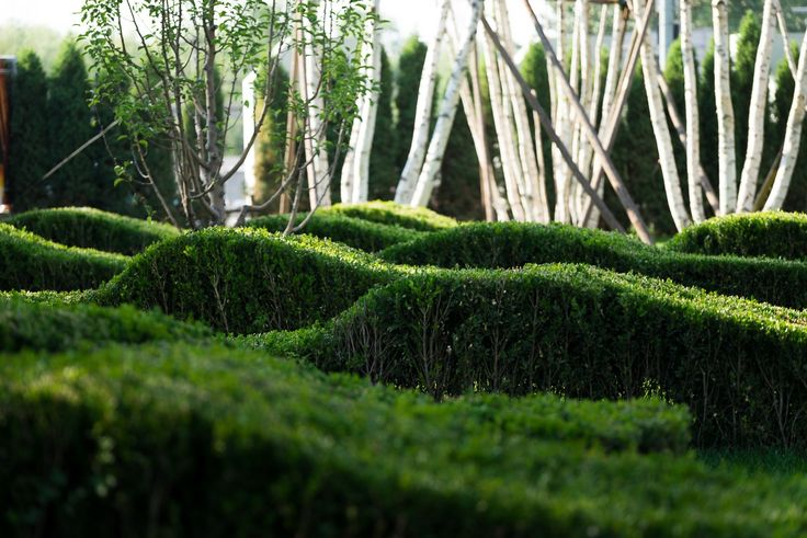 martha schwartz landscape architecture / beiqijia technology business district, beijing