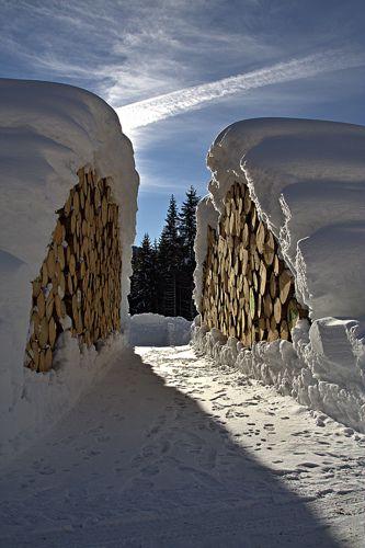 The Lumber Path
