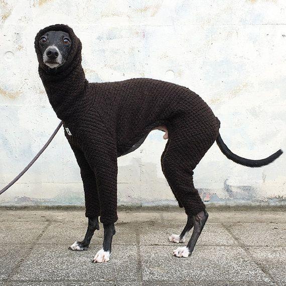 Italian Greyhound Clothing, Wool Knit Jammies, Jumpsuit, Romper, Onesie, Popcorn [Dark Brown]