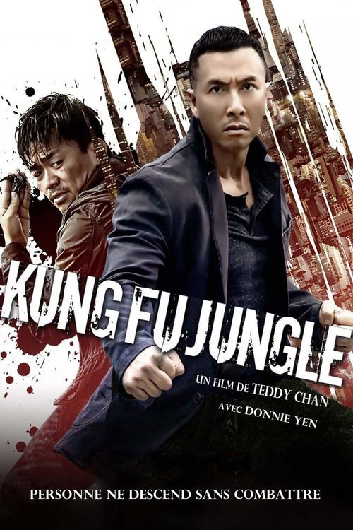Watch Kung Fu Jungle 2014 Full Movie Online Free
